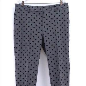 Ann Taylor loft polkadot dress pants